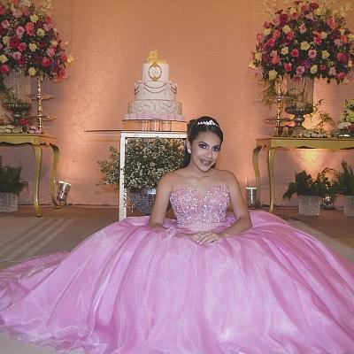 15 Anos Luiza Catarina -